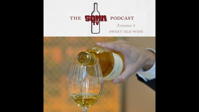 SommTV Podcast Ep 8 Sweet Old Wine