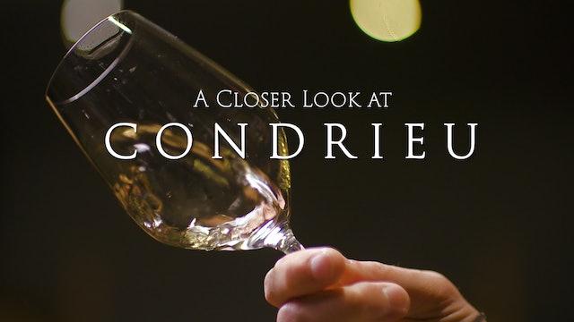 A Closer Look at Condrieu