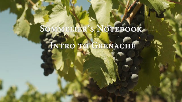 An Intro to Grenache