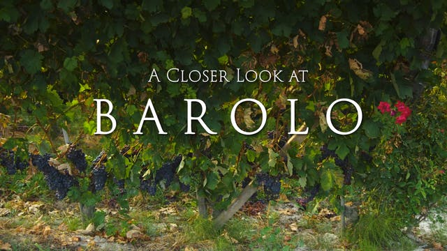 A Closer Look at Barolo