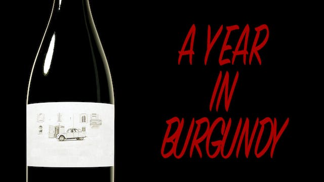 A Year in Burgundy trailer
