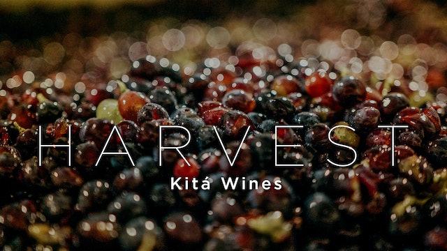 Harvest Episode 9: Kitá