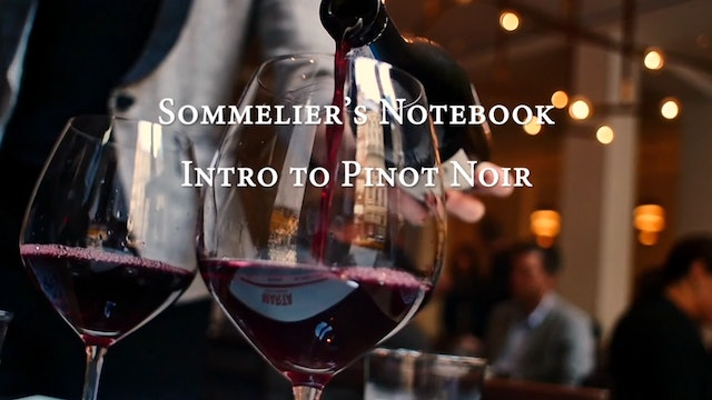 An Intro to Pinot Noir