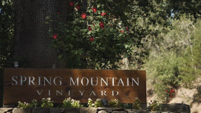 Behind the Glass: Spring Mountain