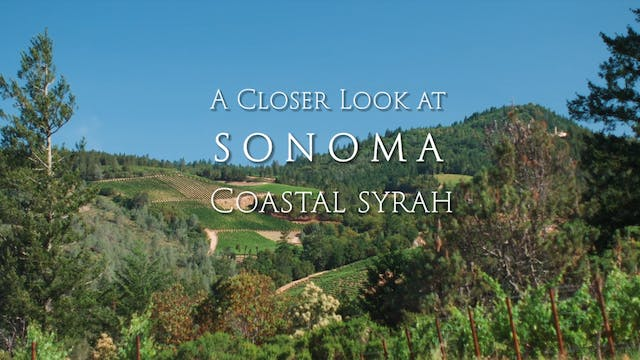 A Closer Look at Sonoma: Coastal Syrah