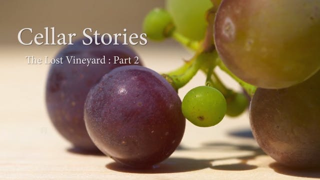 Cellar Stories Episode 3 | The Lost V...