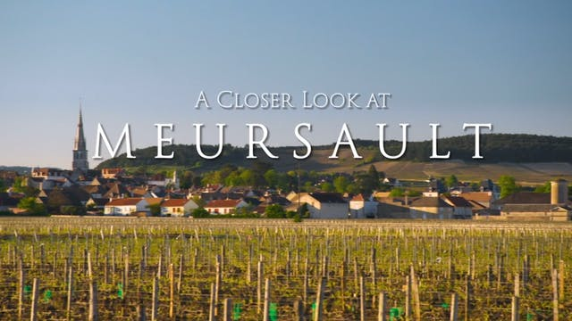 A Closer Look at Meursault