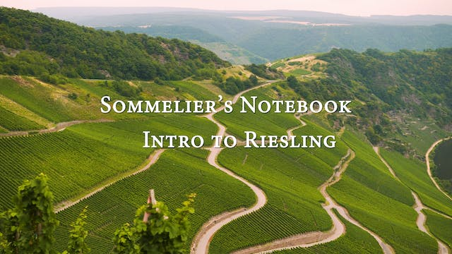 An Intro to Riesling