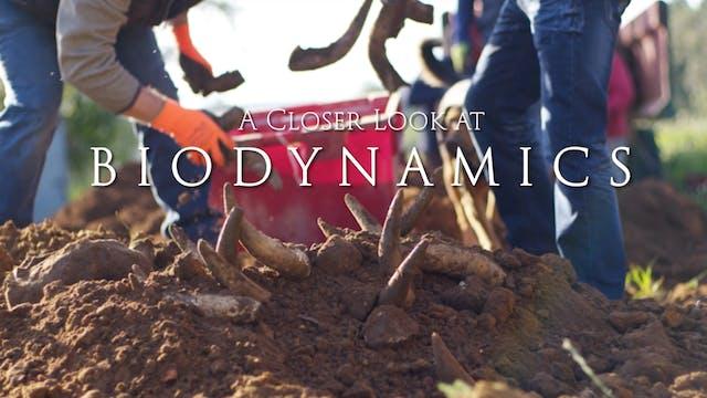 A Closer Look at Biodynamics