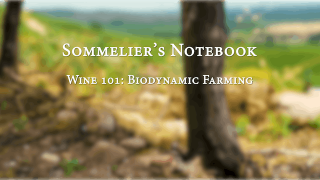 An Intro to Biodynamic Farming