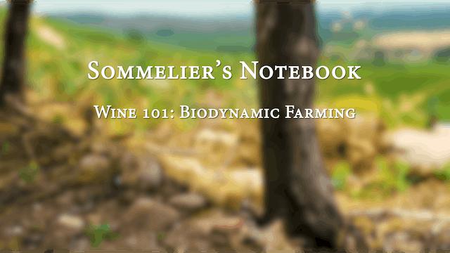 An Intro to Biodynamic Farming