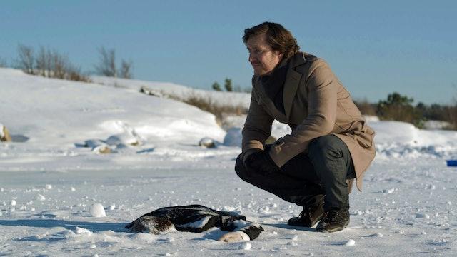 Inspector Winter: The Last Winter, Part 1 (Sn 1 Ep 7)
