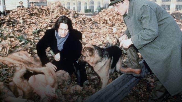 Murder at Schönbrunn