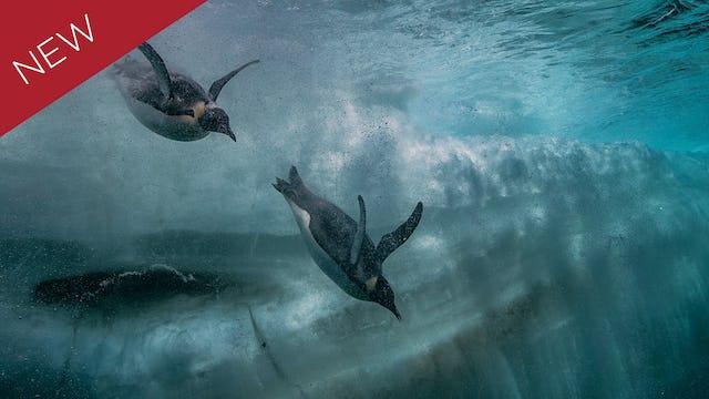 Antarctica's Secrets