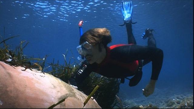 Inspector Manara: Underwater World (Sn 2 Ep 5)