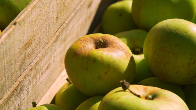 Le Petit Tour: Cider in the Alps (Sn ...