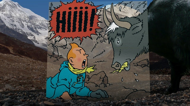 In The Footsteps Of Tintin: Tintin in Tibet (Sn 1 Ep 5)
