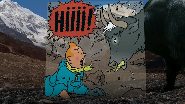 In The Footsteps Of Tintin: Tintin in...