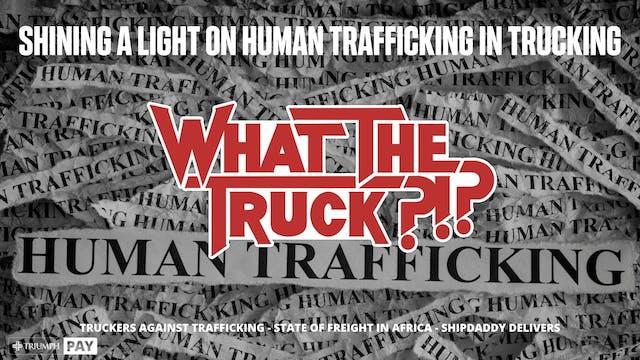 Shining a light on human trafficking ...