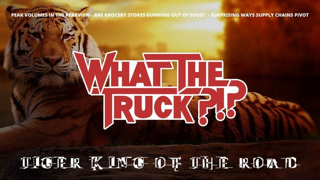 Tiger King of the Road - WHAT THE TRU...