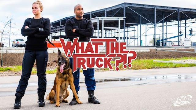 How air cargo K9s work - WHAT THE TRU...