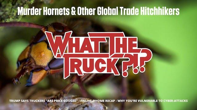 Murder Hornets & Other Global Trade H...