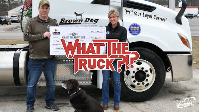 The dog days of freight - WHAT THE TR...