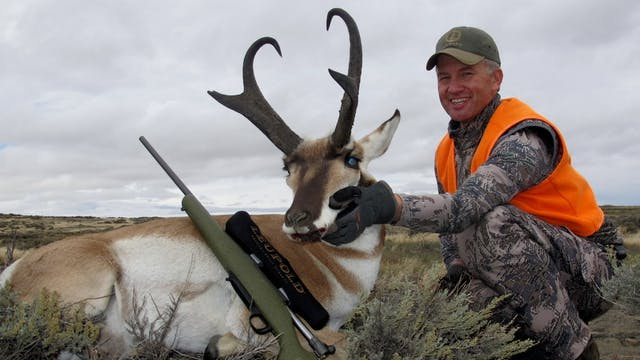 Pronghorn Pursuits