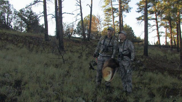 Elk Hunting Public Lands - Randy Newberg, Hunter