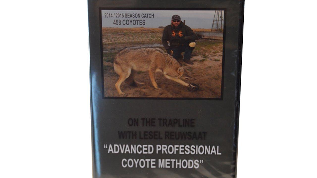 """Lesel Reuwsaat's """"Advanced Prof Coyote Methods"""""""