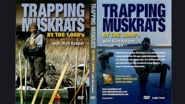 Trapping Muskrats by the 1000s-Rich Kaspar 3 hrs