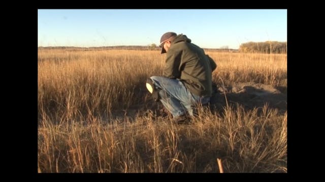 On The Trapline with Lesel Reuwsaat Advanced Professional Badger Methods
