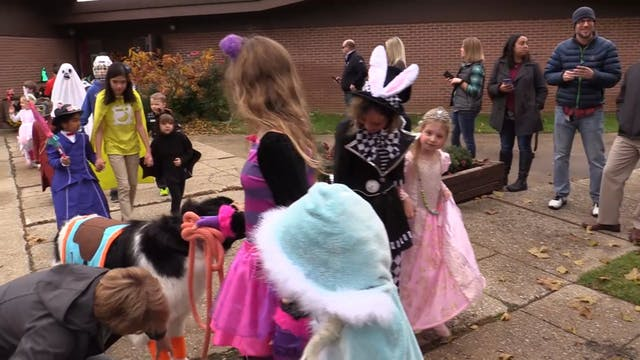 Gagie School Halloween Parade 2018