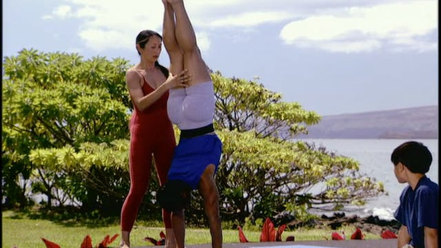 Family Yoga - Free Downloads from Gaiam