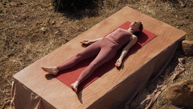 Seane Corn's Detox Flow Yoga