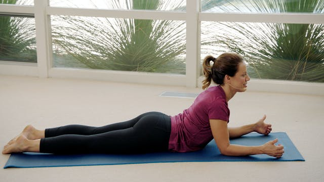 Total Posture Restoration