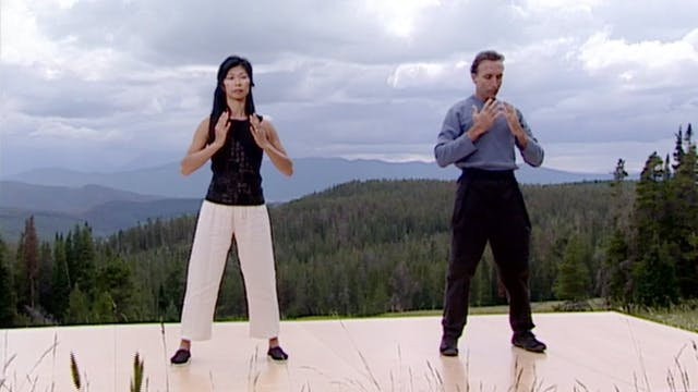 Qigong for Cleansing