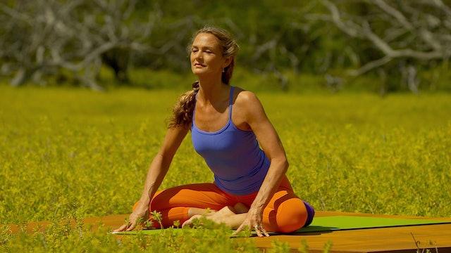 P.M. Meditation