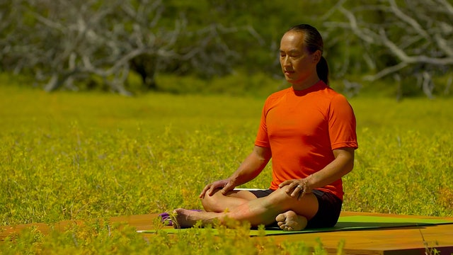 A.M. Meditation