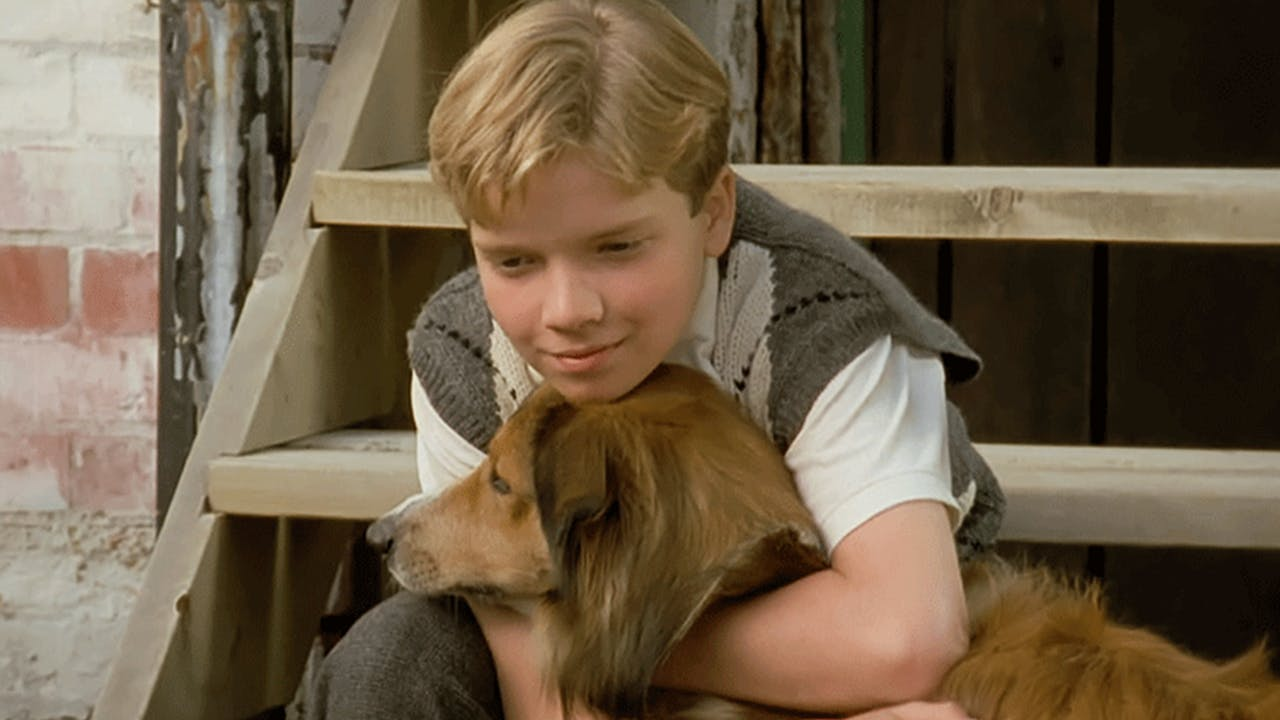 "Episode 5: ""My Dog Pal"""