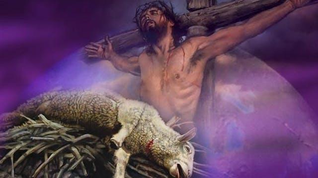 JESUS ON TRIAL PT.6 (SACRIFICIAL LAMB EXPOSED)