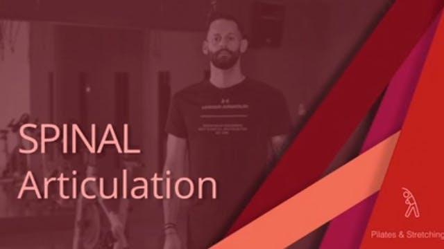 Spinal Articulation