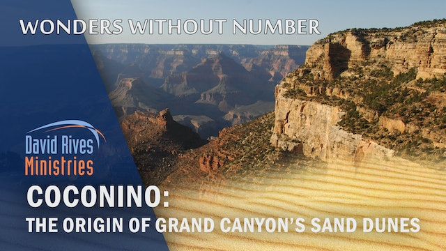 COCONINO: Origin of Grand Canyon's Sand Dunes - Dr. John Whitmore & David Rives