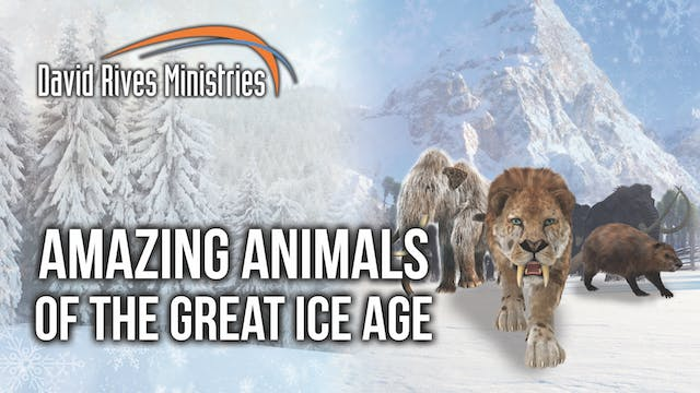 Amazing Animals of the Great Ice Age ...