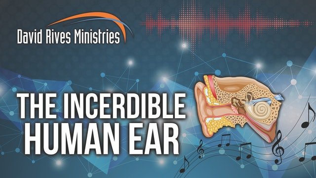 The Incredible Human Ear - Prof. Andy McIntosh and David Rives
