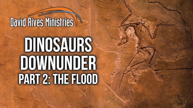 Dinosaurs Downunder - The Flood - John Mackay and David Rives