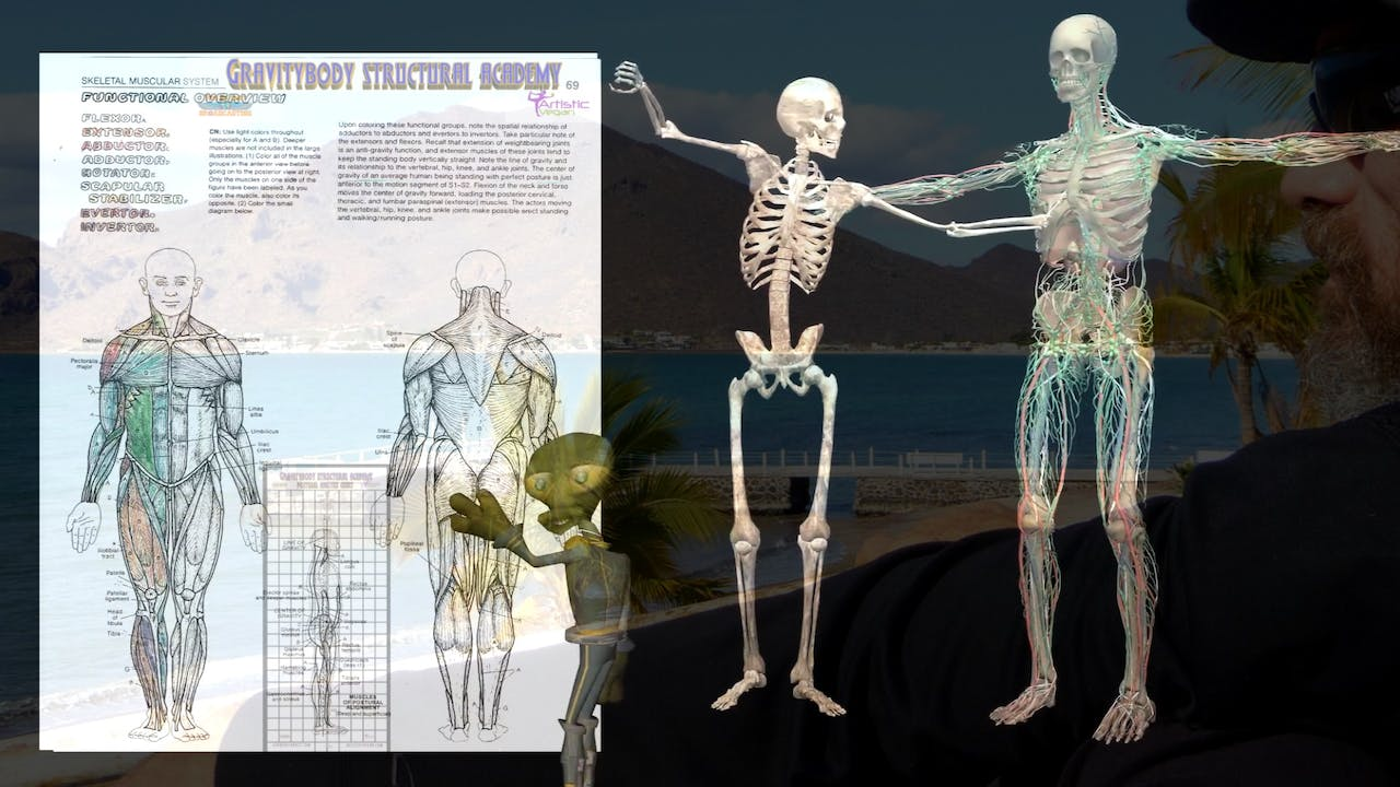 Gravity Body Academy Structural Anatomy 3-Part Series