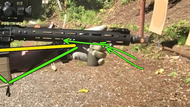 Rifle Grip Video Diagnostic Example 1