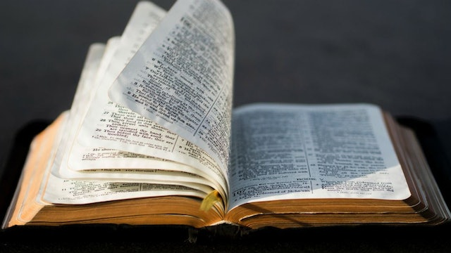 Storyline of the Bible: The New Testament