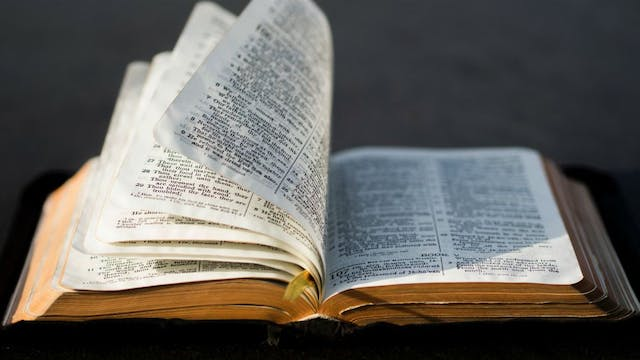 Storyline of the Bible: The New Testa...